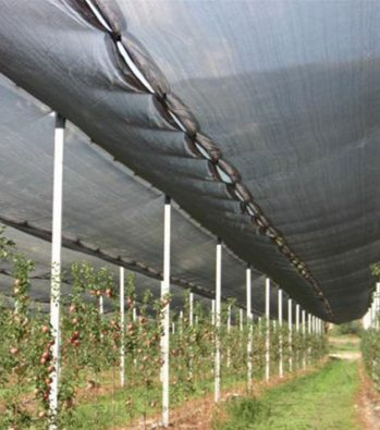 Αντιχαλαζικό Δίχτυ Μαύρο Frustar